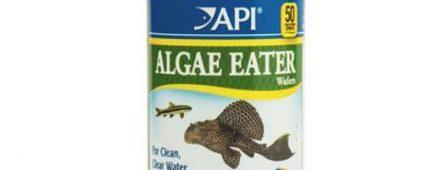 API Algae Eater Wafers 181g