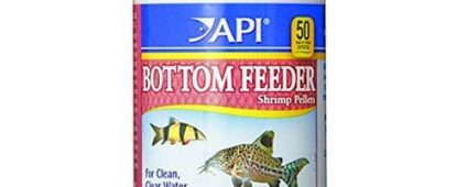 API Bottom Feeder Shrimp Pellets 43g