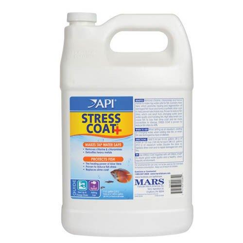 API Stress Coat 3.8L
