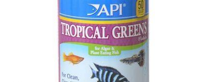 API Tropical Greens Flakes 31g