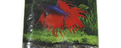 Activ.Betta Betta Lake Gems 1lb