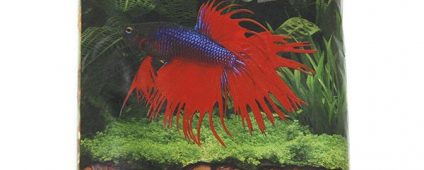 Activ.Betta Betta Red River 1lb