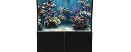Aqua One AquaReef 290 Marine Set 290L 80Lx60Dx60 80cm H Black