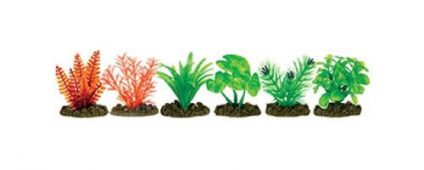 Aqua One Plastic Plant 6cm Assorted Ground 6/pk