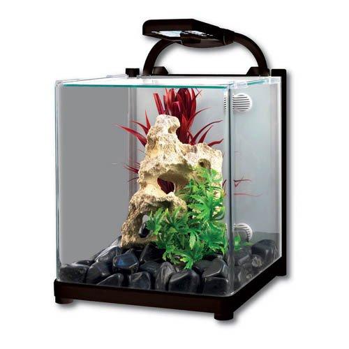 Aqua One Reflex 13 Glass Aquarium 13L 22W x 25D x 27cm H (Black)