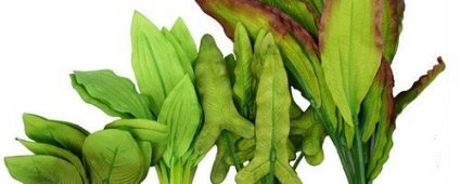 Aqua One Silk Plant 4pk Mix 5