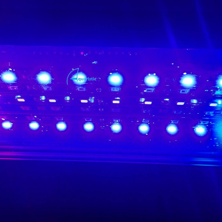 Aqualina MR Additional LED Strip - Blue (450nm-465nm) / Foot $11.00