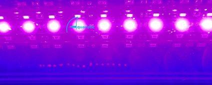 Aqualina MR Additional LED Strip - Magenta (425nm-450nm) / Foot $11.00
