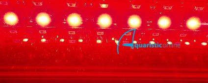 Aqualina MR Additional LED Strip - Red / Foot $11.00