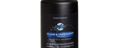 Blue Planet Fluke & Tapeworm 100 Tablets