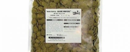 Hikari Algae Wafers 1kg