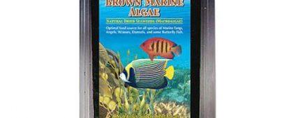 Ocean Nutrition Brown Algae 30g + Clip