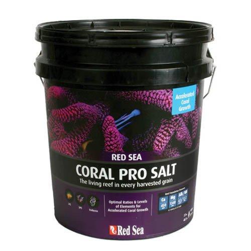 Red Sea Coral Pro Salt 22kg Bucket