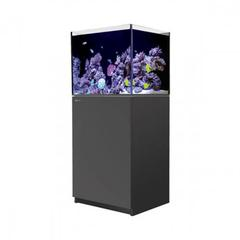 Red Sea Reefer 170 Black