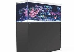 Red Sea Reefer 425 XL Black