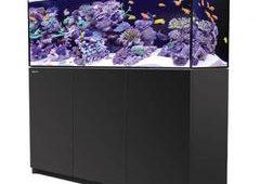 Red Sea Reefer 450 Black