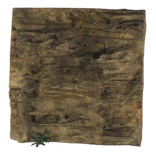 "Universal Rocks Ledge Background 36"" x 36"""