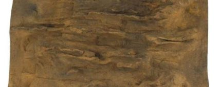 "Universal Rocks Ledge Background 48"" x 28"""